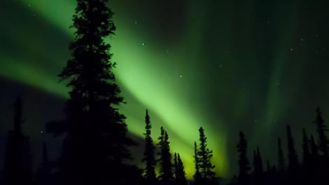 알래스카 주 데날리 국립공원 및 보호 지구