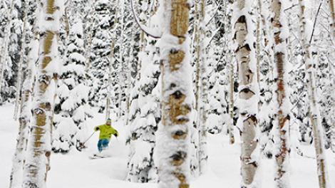 겨울 스포츠의 천국, 유타 주에서 즐기는 스키