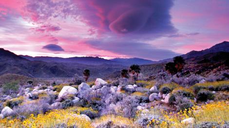캘리포니아 주 팜스프링스