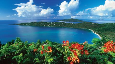 미국령 버진아일랜드