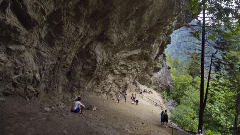 앨럼 케이브 트레일은 르콩트 산 탐방로 중 가장 짧지만 가장 험준하기도 합니다.