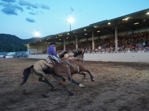 에스테스 파크에서 일주일 동안 진행되는 루프탑 로데오의 재빠른 카우보이 모습