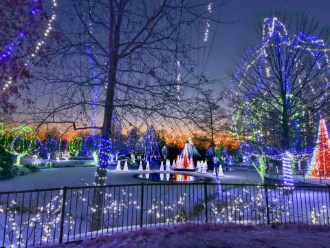 오하이오주의 콜럼버스 동물원 및 수족관의 와일드라이트 빛 축제 장식